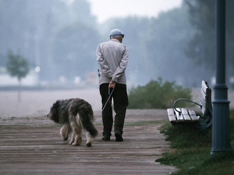 Пожилой человек гуляет с собакой