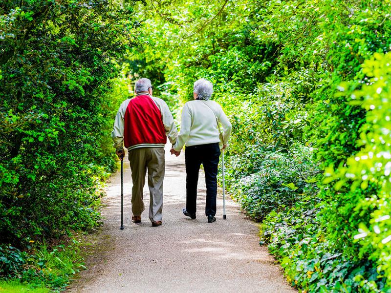 Режим дня для пожилых людей