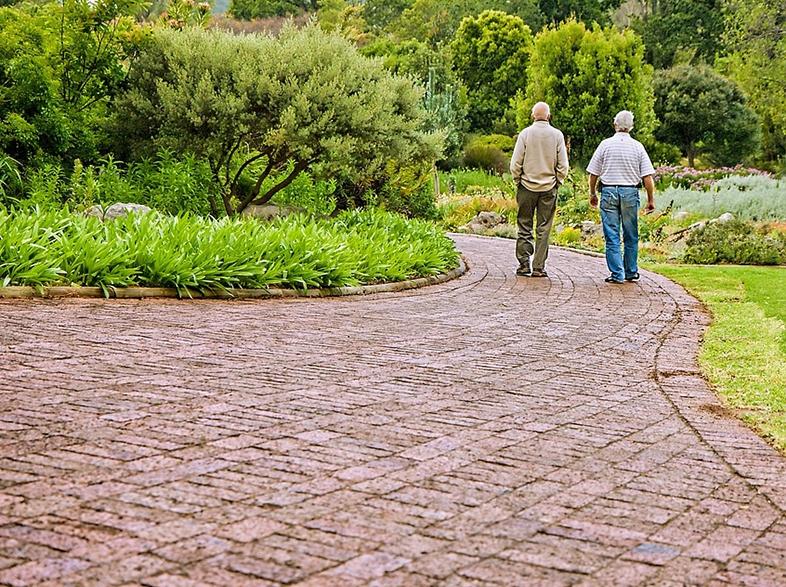 мифы о частных пансионатах для пожилых